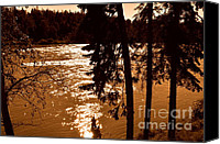Sunset Glass Art Canvas Prints - Salmon Is Running 2 Canvas Print by Tanya  Searcy