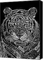 Animal Glass Art Canvas Prints - Samson Canvas Print by Jim Ross