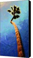 Clemente Digital Art Canvas Prints - San Clemente Beach Palm Canvas Print by Ron Regalado