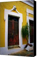 Screen Doors Photo Canvas Prints - San Juan Doors Canvas Print by Perry Webster