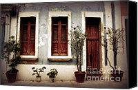 Screen Doors Photo Canvas Prints - San Juan Living Canvas Print by Perry Webster