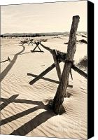 Coral Pink Sand Dunes Canvas Prints - Sand and Fences Canvas Print by Heather Applegate