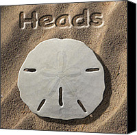 Heads Digital Art Canvas Prints - Sand Dollar Heads Canvas Print by Mike McGlothlen