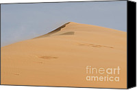 Coral Pink Sand Dunes Canvas Prints - Sand Dune Canvas Print by Heather Applegate