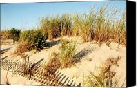 Sand Fences Canvas Prints - Sand Dune III - Jersey Shore Canvas Print by Angie McKenzie