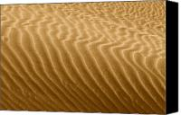 Kelso Canvas Prints - Sand Dune Mojave Desert California Canvas Print by Christine Till