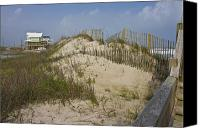 Topsail Island Canvas Prints - Sand Dunes II Canvas Print by East Coast Barrier Islands Betsy A Cutler
