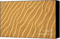 Beaches Canvas Prints - Sand ripples abstract Canvas Print by Elena Elisseeva