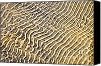 Backdrop Canvas Prints - Sand ripples in shallow water Canvas Print by Elena Elisseeva