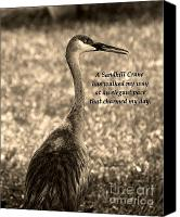 Sandhill Crane Canvas Prints - Sandhill Crane Poem Canvas Print by Vilma Rohena