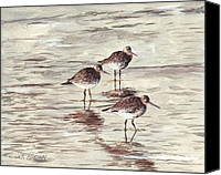 John Brown Canvas Prints - Sandpipers Canvas Print by John Brown