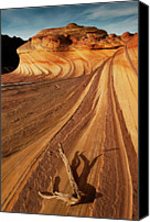 Driftwood Canvas Prints - Sandstone Wave Canvas Print by www.JLongPhoto.com