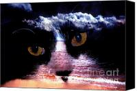 Bruster Canvas Prints - Sandy Paws Canvas Print by Clayton Bruster