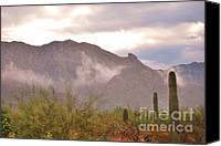 Prairie Photography Canvas Prints - Santa Catalina Mountains II Canvas Print by Donna Van Vlack