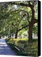 Savannah Square Canvas Prints - Savannah Benches Canvas Print by Carol Groenen