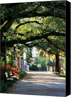 Park Benches Photo Canvas Prints - Savannah Park Sidewalk Canvas Print by Carol Groenen