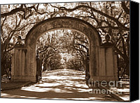 Live Oaks Canvas Prints - Savannaha Sepia - Wormsloe Plantation Gate Canvas Print by Carol Groenen