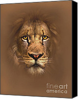 Lion Digital Art Canvas Prints - Scarface Canvas Print by Robert Foster