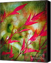Judi Bagwell Canvas Prints - Scarlet Canvas Print by Judi Bagwell