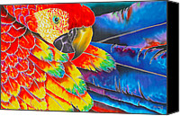 Exotic Bird Tapestries - Textiles Canvas Prints - Scarlet Macaw Canvas Print by Daniel Jean-Baptiste