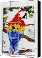Birds Ceramics Canvas Prints - Scarlet Macaw Canvas Print by Dy Witt