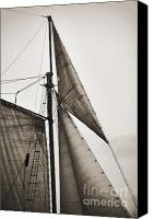 White Seagull Canvas Prints - Schooner Pride Tall Ship Yankee Sail Charleston SC Canvas Print by Dustin K Ryan