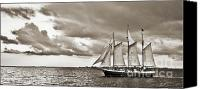 White Seagull Canvas Prints - Schooner Pride Tallship Charleston SC Canvas Print by Dustin K Ryan