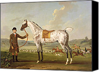 Thomas Canvas Prints - Scipio - Colonel Roches Spotted Hunter Canvas Print by Thomas Spencer