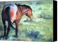 Wild Horse Pastels Canvas Prints - Scorn Canvas Print by Deb LaFogg-Docherty