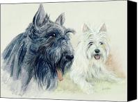 Scottie Dog Canvas Prints - Scottie and Westie Canvas Print by Morgan Fitzsimons