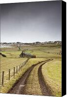 Country Dirt Roads Photo Canvas Prints - Scottish Borders, Scotland Tire Tracks Canvas Print by John Short