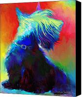 Colorful Drawings Canvas Prints - Scottish Terrier Dog painting Canvas Print by Svetlana Novikova