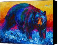 Cub Canvas Prints - Scouting For Fish - Black Bear Canvas Print by Marion Rose
