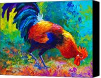 Chicken Canvas Prints - Scratchin - Rooster Canvas Print by Marion Rose