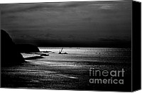 Crane Canvas Prints - Sea Scene Canvas Print by Dean Harte