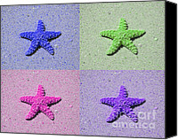 Beach Photograph Digital Art Canvas Prints - Sea Star Serigraph - 4 Stars Canvas Print by Al Powell Photography USA