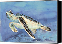 Creature Painting Canvas Prints - Sea Turtle Canvas Print by Arline Wagner