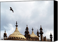Pavilion Canvas Prints - Seagull And Brightonpavillion Canvas Print by Darren Lehane