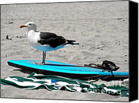 Black Birds Canvas Prints - Seagull on a Surfboard Canvas Print by Christine Till