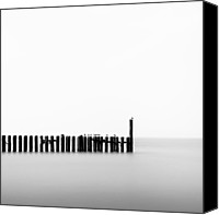 Long Canvas Prints - Seagulls and Groynes Canvas Print by David Bowman