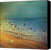 Seagull Photo Canvas Prints - Seagulls Flying Canvas Print by Istvan Kadar Photography