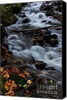 Wahkeena Creek Canvas Prints - Seasonal Rush Canvas Print by Marcus Angeline