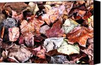 Leaf Pile Photo Canvas Prints - Seasons Change Canvas Print by John Rizzuto