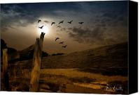 Geese Canvas Prints - Seasons of Change Canvas Print by Bob Orsillo