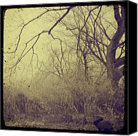 Goth Canvas Prints - Secret Garden Canvas Print by Gothicolors With Crows
