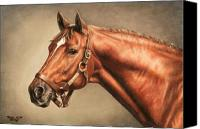 Animal Portrait Canvas Prints - Secretariat at Claiborne Canvas Print by Thomas Allen Pauly