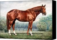 Horse Portrait  Canvas Prints - Secretariat Canvas Print by Thomas Allen Pauly