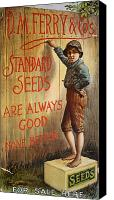 Tom Boy Canvas Prints - SEED COMPANY POSTER, c1890 Canvas Print by Granger