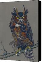 Great Pastels Canvas Prints - Seeking Owl  Canvas Print by Christine Kane