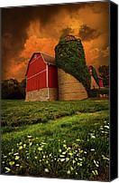 Barn Photo Canvas Prints - Sentient Canvas Print by Phil Koch
